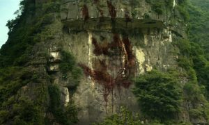 Blooded-palm-in-Kong-Skull-island