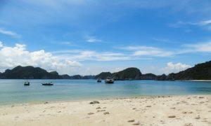 Monkey-island-beach-cat-ba