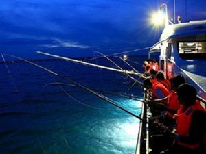 Squid fishing